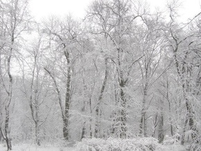 Погода на четверг, 26 февраля