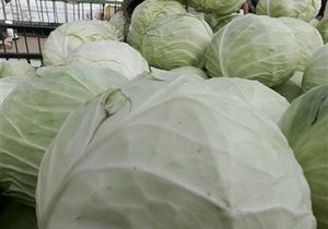 Кабмин утвердил план развития производства картофеля и овощей