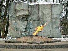 Российские подростки заживо сожгли прохожего на Вечном огне