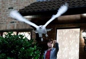 В США похитили редкий экземпляр книги о Гарри Поттере