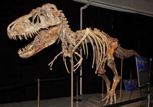 В США полиция арестовала похитителя динозавров