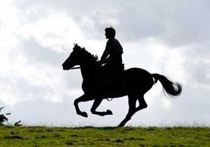 Трейлер к фильму Боевой конь