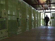 Сенат США раскрыл методы допросов в Гуантанамо