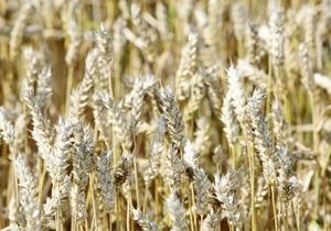 Заявление Путина обвалило котировки пшеницы на французской бирже
