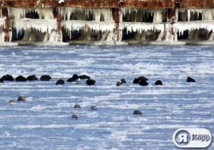 Я-Корреспондент: Замерзшее море и ураганный ветер в Евпатории