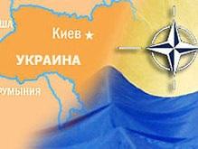 Теневой Кабмин: США не решили, поддержать ли Украину в вопросе о НАТО