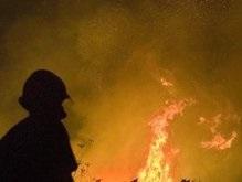 На заводе в Техасе произошел взрыв и утечка аммиака, есть пострадавшие