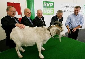 Похитители перекрасили козла-талисмана крайне правой партии Швейцарии в черный цвет