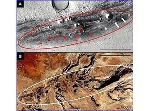На Марсе обнаружили обитаемую землю