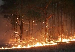 МВД: По уголовному делу о пожарах в Днепропетровской области проходят работники лесхоза