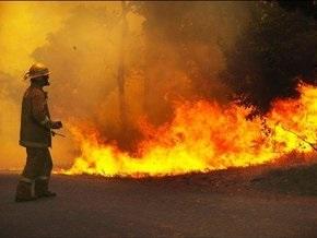 Жертвами огня в Австралии стали 96 человек (обновлено)