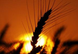 Администрация Януковича: Украина минимизирует потери от ограничения поставок зерна в Иран