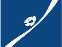 РОДОВИД БАНК выступит официальным спонсором праздника, посвященного отъезду Олимпийской сборной Украины в Пекин
