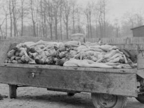 В Германии отметили годовщину освобождения узников Бухенвальда