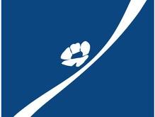 РОДОВИД БАНК запустил на вэб-странице новый раздел «Корпоративное Управление»