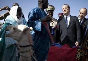 Фермер из Мали убил и съел верблюда президента Франции
