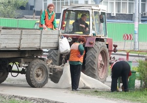 В течение месячника по благоустройству в Киеве высадили свыше 70-ти тысяч деревьев и кустов