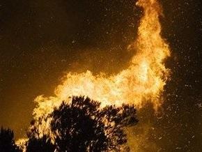 В Киеве горело 10 гектаров леса