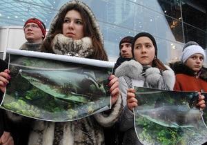 Защитники акулы пикетировали киевский ТРЦ