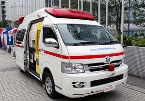 В Японии от жары погибли пять человек