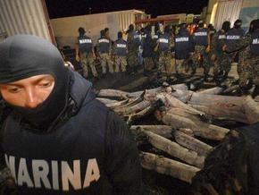 Мексиканские военные нашли 900 кг кокаина в замороженных акулах
