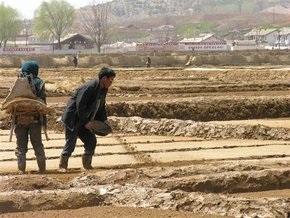 ООН: Треть населения Северной Кореи голодает