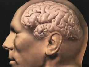 Ученые научились выборочно стирать память