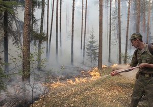В результате возгорания леса в Херсонской области пострадали два спасателя и три работника лесхоза