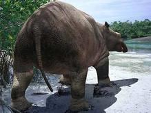 Предки слонов обитали в воде