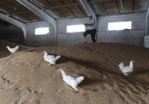 Азаров считает необходимым модернизировать АПК и контролировать цены на продукты