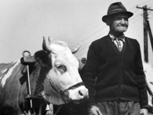 Отправляясь в Италию, румын узнал, что умер 14 лет тому назад