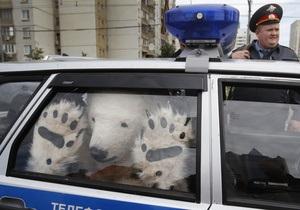 В Москве задержали активистов Greenpeace в костюмах белых медведей