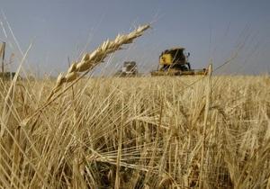 Кабмин ввел квоты на экспорт зерна - нардеп