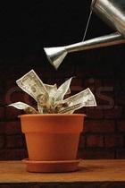 Мошенничества и финансовые злоупотребления в компаниях