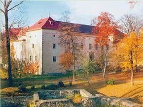 Найдена похищенная из Ужгородского замка картина