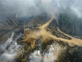 Жертвами лесных пожаров в Австралии стал 181 человек