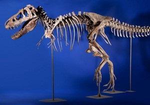 Контрабанда костей динозавра в США: палеонтолог сознался