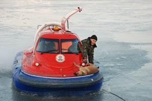 В Николаеве спасатели за сутки спасли две собаки и женщину по имени Муза