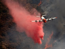 Калифорнию охватил огонь. Площадь пожара стремительно растет