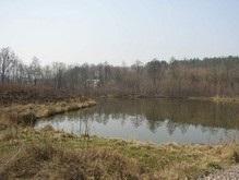 Возле Выдубицкого озера в Киеве запретили строить офисы