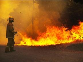 В австралийском штате Виктория из-за лесных пожаров погибли 14 человек