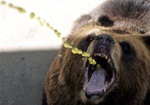 В Луганске на женщину напал сбежавший из частных владений медведь