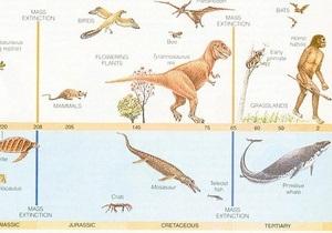 Ученые опровергли теорию Дарвина
