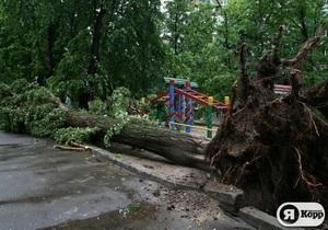 В Киеве ураган сломал около сотни деревьев