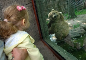 Экологи переживают, что животные в Киевском зоопарке могут пострадать из-за отсутствия выходных
