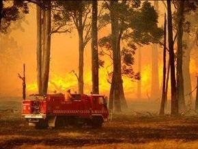 Австралия в огне: число жертв быстро растет