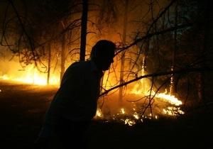 В Херсонской области на площади 50 га горит лес
