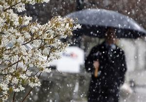 Начальник Гидрометцентра: В Украине 8-9 апреля ожидается резкое похолодание
