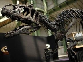 Палеонтологи исследовали каннибализм у динозавров