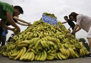 Бананы и маниока могут занять место пшеницы и риса
